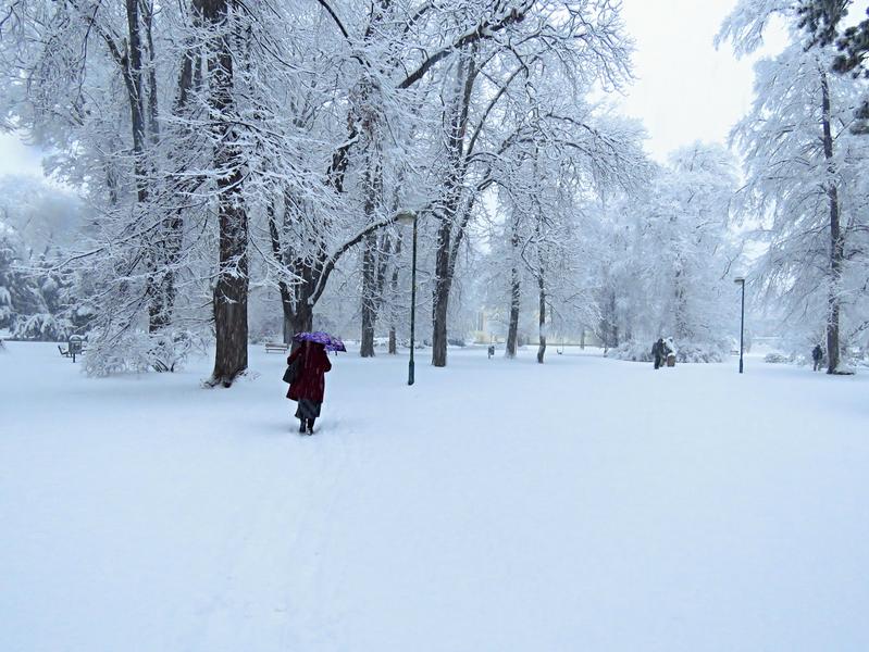 7. Bílá zima