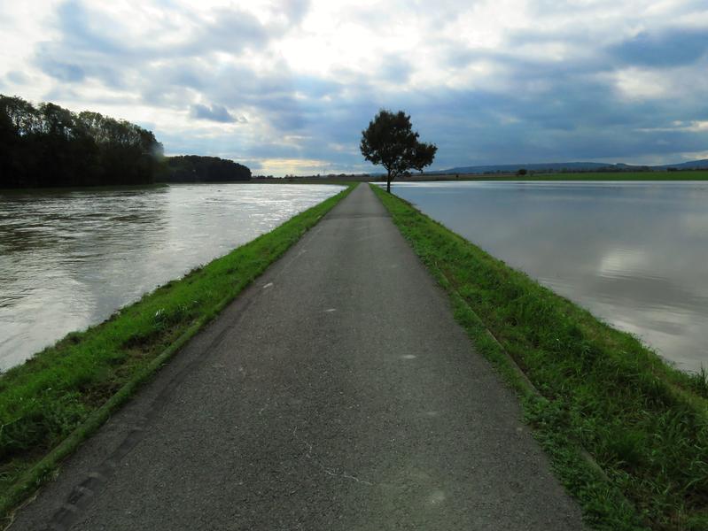 5. Krajiny (zaplavené pole u  cyklostezky mezi Starým Městem a Kostelany nad Moravou, 15. 10. 2020)