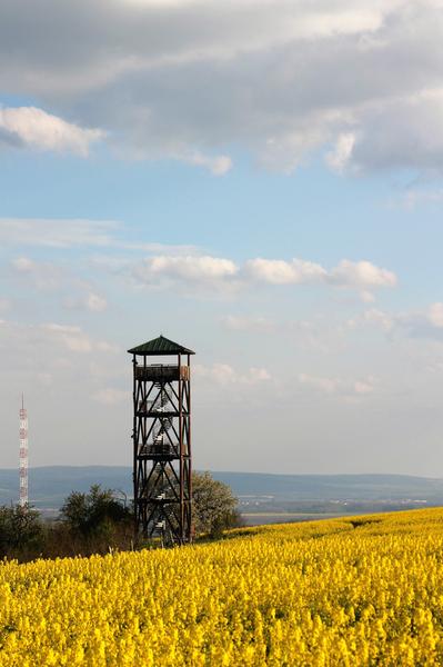 Slovácko v zajetí žluté II