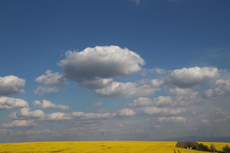 Slovácko v zajetí žluté IV