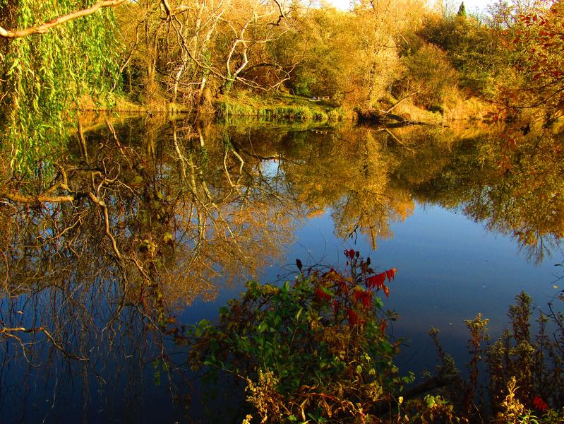 Čerťák - přírodní památka