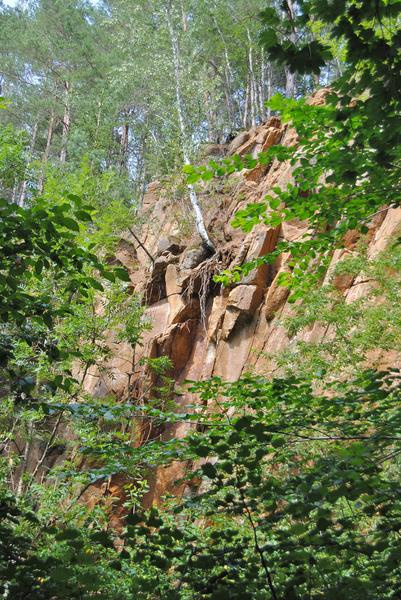 lom nezdenice (v lese)