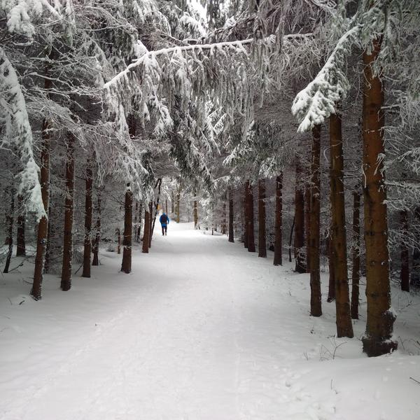 Cestou na Lopeník